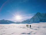 Skiers Approaching Mount Tyree Fotoprint van Gordon Wiltsie