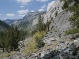 A View Through Goddard Canyon, Along the John Muir Trail Fotografisk tryk af Rich Reid