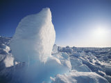 A View of Arctic Ice Photographic Print by Norbert Rosing