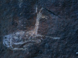 A Cave Painting of a Rhebok in the Drakensberg Range Photographic Print by Kenneth Garrett