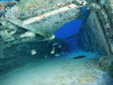 Fish Swimming in Shipwreck, Tortola Island, Virgin Islands Photographic Print by Joe Stancampiano