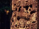 Bird and Mayan Monument Photographic Print by Kenneth Garrett