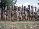 Konso Memorial Wood Carvings, Ethiopia Photographic Print by Michele Burgess