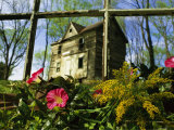 Morning Glory Flowers Grow in Front of an Old House in Virginia Photographic Print by Annie Griffiths Belt