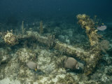 An Encrusted Anchor Sits on the Ocean Floor off the Coast of Key Largo, Florida Photographic Print by Wolcott Henry