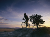 Cyclist at Sunset, Northern Arizona Photographic Print by David Edwards