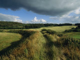 Fields Near Lindholm Hoje, the Largest Known Viking Burial Ground Photographic Print by Sisse Brimberg