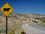 A Stretch of Road in New Mexico with a Yellow Cattle Crossing Sign Photographic Print by Todd Gipstein