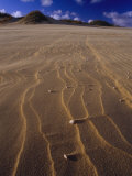 Patterns in Sand Dunes Formed by the Blowing Wind Photographic Print by Jason Edwards