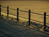 A Fence Covered in Ice Photographic Print by Sam Abell