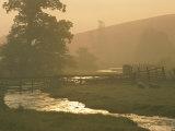 Vue pastorale des moutons broutant près d'un cours d'eau Photographie par James L. Stanfield