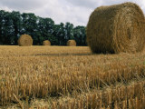 Haystacks in a Field in Normandy Photographic Print by Nicole Duplaix