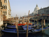 Gondolas Line a Canal in Venice Photographic Print by Nicole Duplaix
