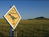 A Playful Sign Warns Motorists to Watch out for Dinosaurs Photographie par Ira Block