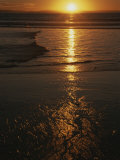 A Yellow Sunset Reflected Upon the Water at Manhattan Beach Photographic Print by Stacy Gold