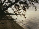 A View of the Shoreline in the Apostle Islands Photographic Print by Raymond Gehman