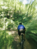 A Mountain Bicyclist Races Down a Forest Trail Photographic Print by Skip Brown