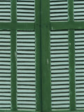 Green and White Shutters Photographic Print by Steve Raymer