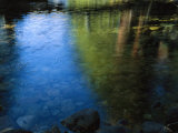 Beautiful Colors are Reflected in the Merced River Photographic Print by Marc Moritsch