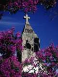 St. Anthony Church, Brazil Photographic Print by Silvestre Machado