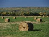 A View of Manitoba Escarpment Photographic Print by Raymond Gehman