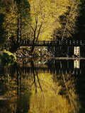 Trees and a Footbridge are Reflected in the Merced River Photographic Print by Marc Moritsch