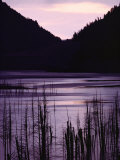 Earthquake Lake, Madison River Quake Area, Gallatin National Forest Photographic Print by Raymond Gehman