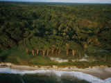 An Aerial View of the Beach Where Mike Fay Ended His Megatransect Photographic Print by Michael Nichols