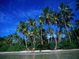 One of Many Palm Fringed Beaches on Tindare Island, Togos Os Santos Bay, Itaparica, Brazil Impressão fotográfica por Manfred Gottschalk