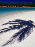 The Shadow a Palm Leaf on the White Sand of One of Aitutaki Lagoon's Many Islands, Cook Islands Photographic Print by Dallas Stribley
