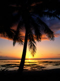 Sunset on West Coast with Silhouetted Palm Tree, Cook Islands Photographic Print by Manfred Gottschalk