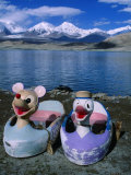 Hire Boats Sit on Shore of Karakul Lake on Route to Kashgar, Kara Kul, Xinjiang, China Photographic Print by Grant Dixon