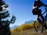 Mountain Biker in Autumn, Canmore, Canada Photographic Print by Philip & Karen Smith