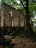 Ruins of Penal Settlement on Ile Royale, French Guiana Photographic Print by Wayne Walton