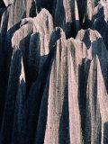 Stone Forest,Kunming, Yunnan, China Fotografisk trykk av Keren Su