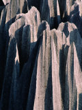 Stone Forest,Kunming, Yunnan, China Photographic Print by Keren Su