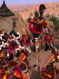 Traditional Dogon Ceremony Associated with the Finish of the Harvest, Tirelli, Mali Fotografisk tryk af Patrick Syder