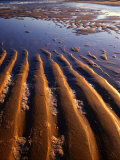 Sand Formations on Five Mile Beach, Wilsons Promontory National Park, Australia Photographic Print by Paul Sinclair