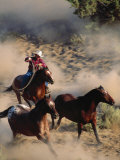 Cowboy Roping Horses Photographic Print by John Luke