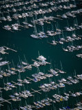 Rows of Yachts Moored at Westhaven Marina, Waitemata Harbour, Auckland, Auckland, New Zealand Photographic Print by David Wall