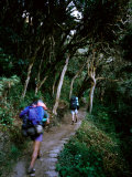 Hiker and Porter on Inca Trail to Machu Picchu Above Llulluchayoc, Cuzco, Peru Photographic Print by Mark Daffey
