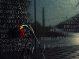 Carnation Left at the Vietnam Veterans Memorial Photographic Print by Medford Taylor