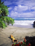 Woman on Beach, Hana Maui, HI Photographic Print by Tomas del Amo
