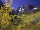 Valley with Autumn Foliage, Maroon Bells, CO Photographic Print by David Carriere