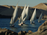 Fleet of Feluccas Parade down the Nile River near Aswan Fotografisk tryk af O. Louis Mazzatenta