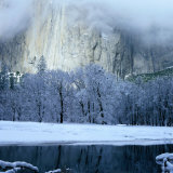 Mercad River and Snow-Covered Black Oak Trees in Front of El Capitan, Yosemite National Park Photographic Print by Wes Walker