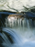 Water Rushing over Rocks Photographic Print by Marc Moritsch