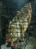 Coronado Fish is Grilled over Hot Coals Photographic Print by Michael Melford