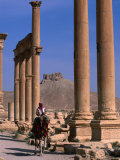 Rider on Camel Walking along the Colonnaded Street of Ruins, Palmyra, Syria Photographic Print by John Elk III