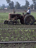 Farmer Sitting on Tractor Photographic Print by Steve Essig
